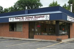 Talbot St. Animal Hospital
